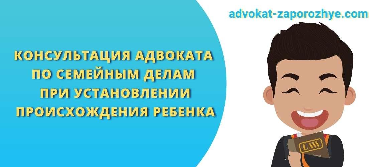 Консультация адвоката по семейным делам при установлении происхождения ребенка
