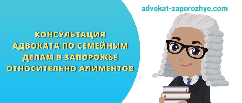 Консультация адвоката по семейным делам в Запорожье относительно алиментов