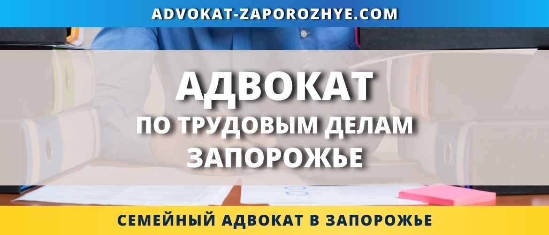 Адвокат по трудовым делам Запорожье