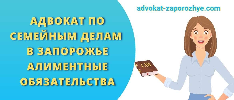 Адвокат по семейным делам в Запорожье Алиментные обязательства