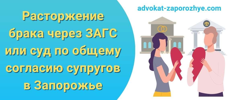 Расторжение брака через ЗАГС или суд по общему согласию супругов в Запорожье