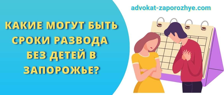 Какие могут быть сроки развода без детей в Запорожье?